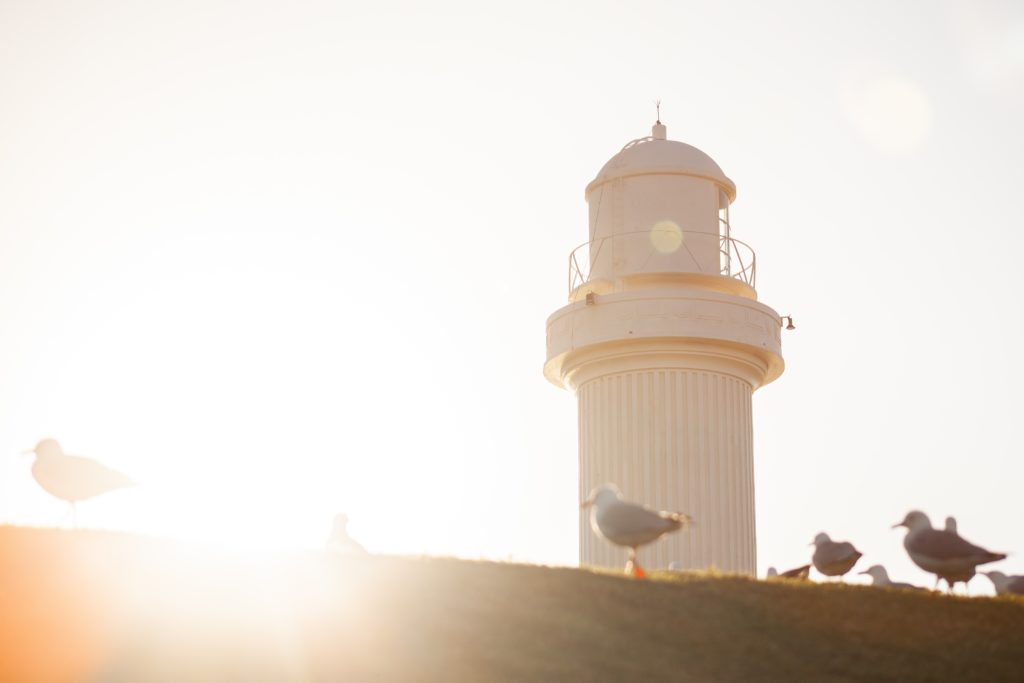 Wollongong lighthouse with seaguls in foreground